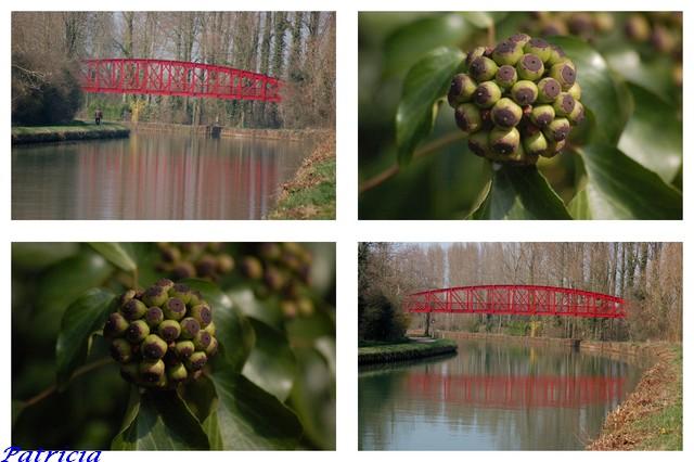 pont rouge dans paysages 52611