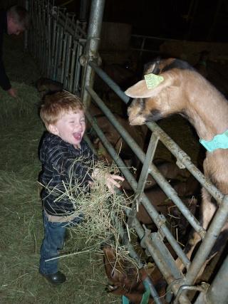 Visite des fermes dans Nos visites p1020010