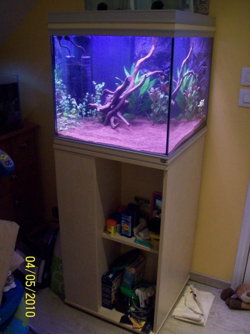 Aquacube rena aqualife for Aquarium rena