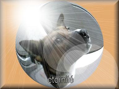 L'Arche d'Eternite