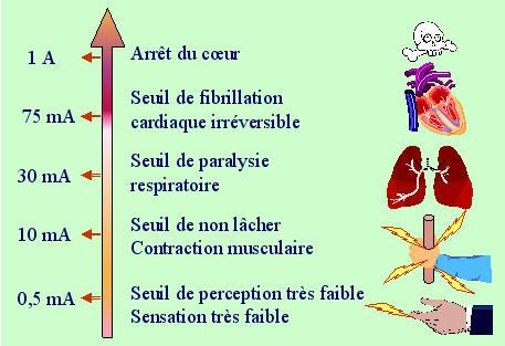 L 39 lectricit et l 39 aquarium for Les dangers de l electricite