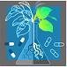 قسم الطب البديل ( طب الأعشاب )