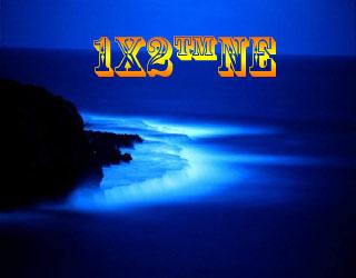 1X2™NE