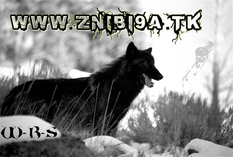 منتديات الblack WOLF