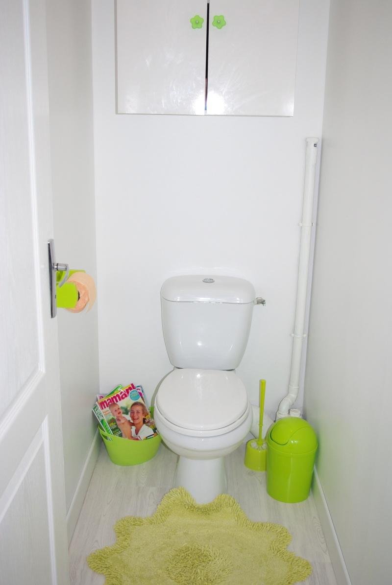 Mes wc en vert anis et fushia tapisserie finie for Quelle couleur peinture pour wc
