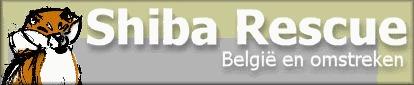 Shiba Rescue