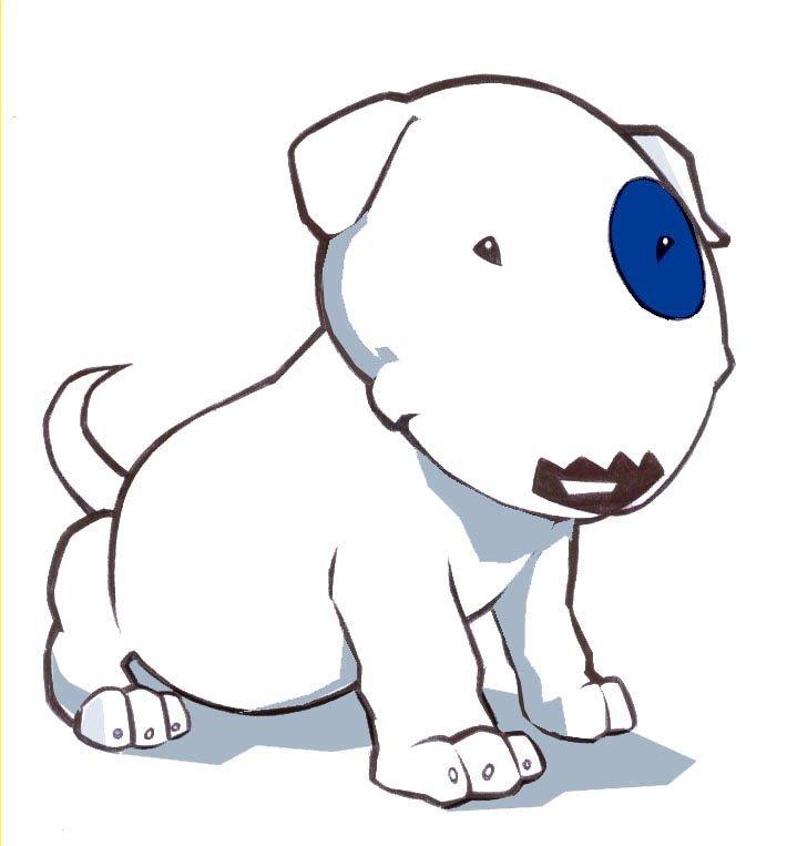 Bull Terrier Brasil