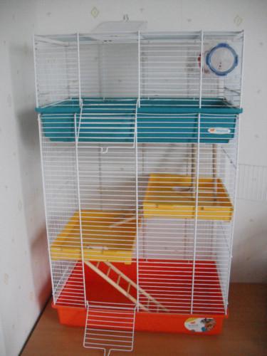 Id es de cage pour mon crapouille et peut tre un copain - Cage a rat pas cher ...
