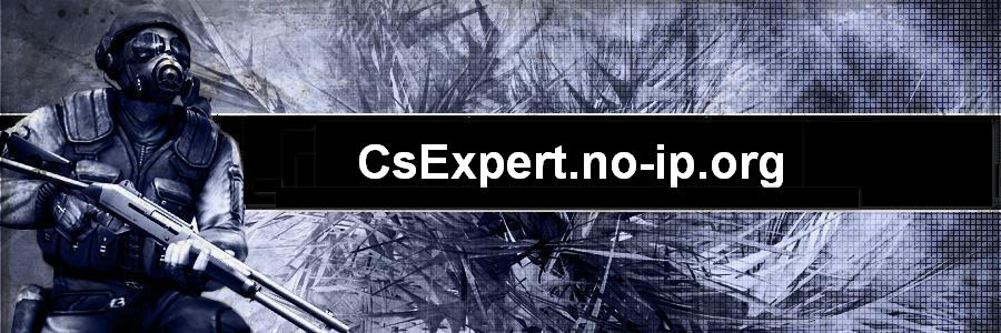 CsExpert.no-ip.org