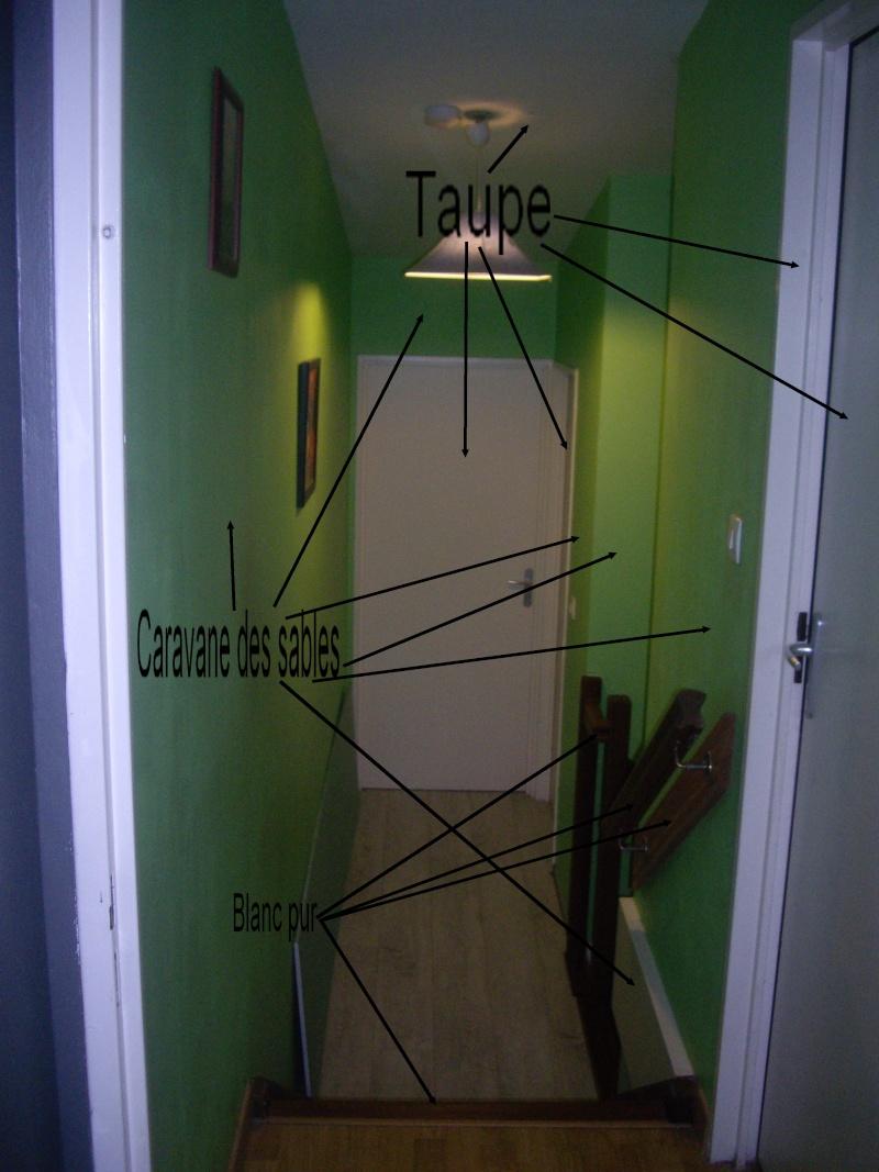 Quelle couleur choisir pour un couloir for Quelle peinture choisir pour une chambre