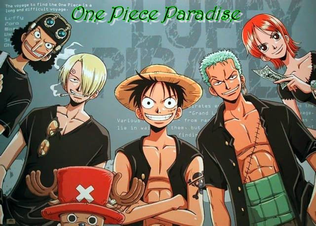 One Piece Paradise